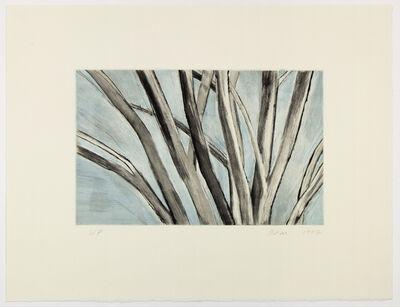 Sylvia Plimack Mangold, 'Winter Elm', 1997