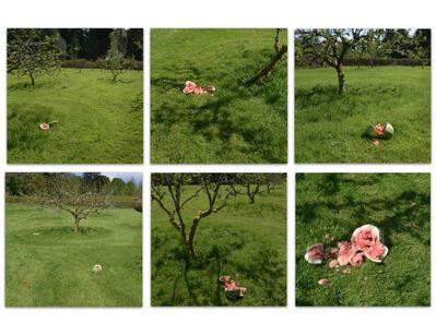 Christine Borland, 'The Velocity of Drops, Orchard, Mount Stuart', 2018