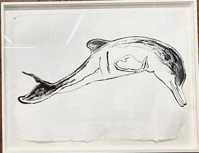 Andy Warhol, 'La Plata River Dolphin', 1986