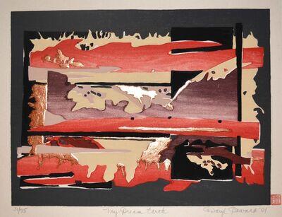 Daryl Howard, 'My Dream Earth', 2001