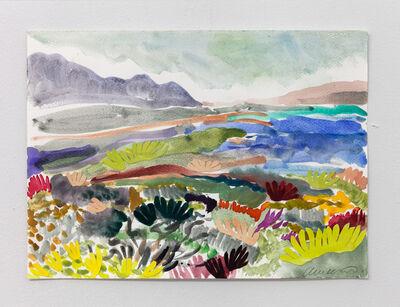 Alexandra Karamallis, 'Fynbos Landscape III', 2017