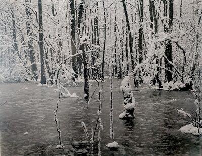 Eric Poitevin, 'Neige ', 2014