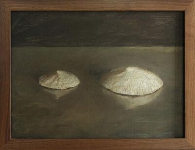 Helen Oh, 'Sea Snail Fossils', 2019