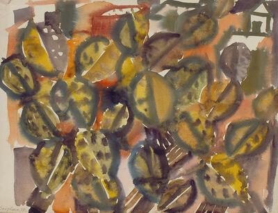 Eduard Bargheer, 'Opuntien', 1974