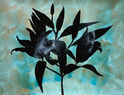 Uttaporn Nimmalaikaew, 'Black flowers with siblings', 2019