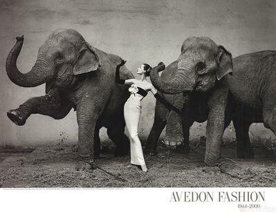 Richard Avedon, 'Dovima with Elephants', 2009