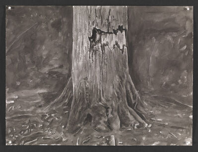 George Shaw, 'Wounded Tree II ', 2015