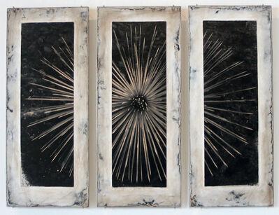 Michael Berman, 'Burnt Yucca', 2012