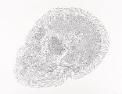 Walter Oltmann, 'Adult Skull', 2015