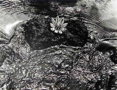 Walter Chappell, 'Signature Pod, Hawaii', 1977