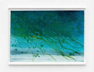 Thiago Rocha  Pitta, 'seascape with cyanobacteria bloom', 2018