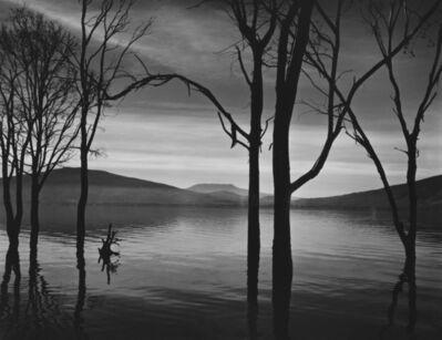 Brett Weston, 'Lake Patzcuaro, Mexico', 1973