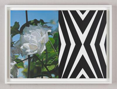 Mustafa Hulusi, 'Abstract Rose (6B, S)', 2010