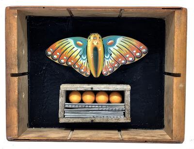 Robin Howard, 'Butterfly Box 6', 2019