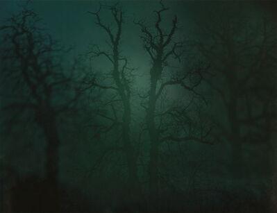 Nicholas Hughes, 'In Darkness Visible no. 14 [Verse I]', 2007
