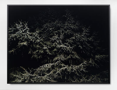 David Zink Yi, 'o.T.', 2008