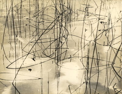 "Marcel Giró, '""Untitled (Grass in Water)', ca. 1950"