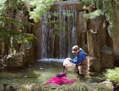 Scott McFarland, 'Pouring, Ben Kubomiwa Treating Fountain with Potassium Permaganata', 2002