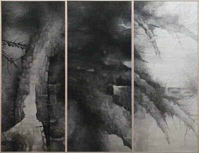 Shao Fan, 'The Pine Asks', 2009-2014