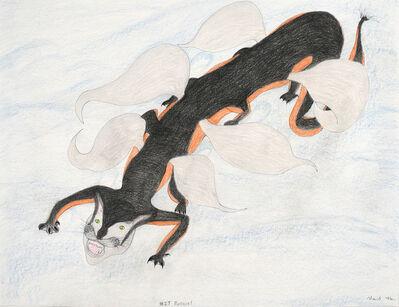 Shuvinai Ashoona, 'Untitled (1827 Pussycat)', 2018