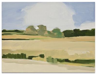 Maureen Gallace, 'Summer Field', 2003