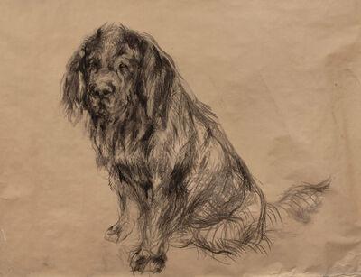 Nicola Hicks, 'Untitled (Dog) ', 2014