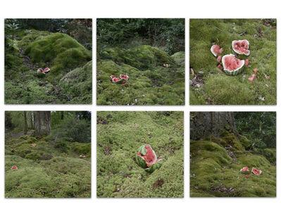 Christine Borland, 'The Velocity of Drops, Sphagnum Moss Grove, Mount Stuart', 2018