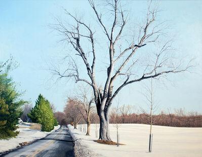 Anita Mazzucca, 'Snow Scene on Crossroad', 2010-2012