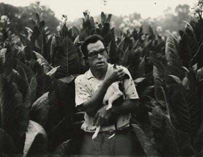 Bill Burke, 'Man with Dog in Tobacco Field, Warren County, Kentucky', 1975