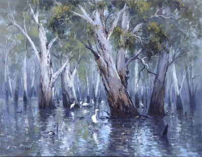 Ted Lewis, 'Flood on the Murray', 2018