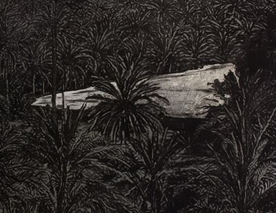 Saad Qureshi, 'Sacred Garden II', 2017