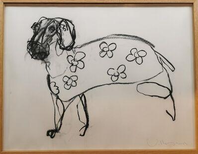 Patrick Villas, 'Small domestic dog', 2013