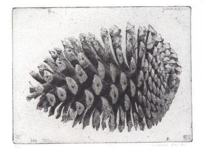 Charles Donker, 'Pine Cone I', 2011