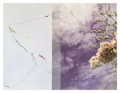 Sandi Haber Fifield, 'Untitled (LF16#143)', 2016