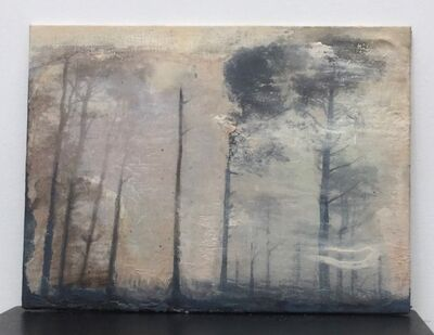 Siobhan McDonald, 'The Trees are Whispering 11', 2020
