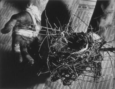 David Wojnarowicz, 'Untitled (hand holding nest)', 1988