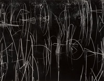 Brett Weston, 'Reeds and Black Water', 1972