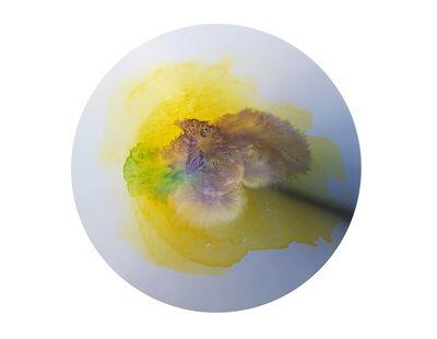 Olafur Eliasson, 'Colour experiment no. 106', 2020