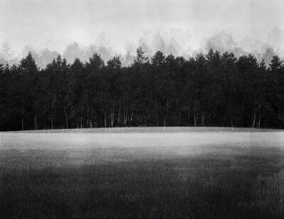 Jonty Sale, 'At Lawn', 2012