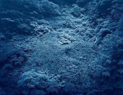 Yojiro Imasaka, 'Illuminating Earth 148 B', 2020