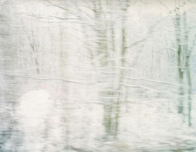 Ori Gersht, 'Untitled 12 Cracow/Auschwitz', 18000