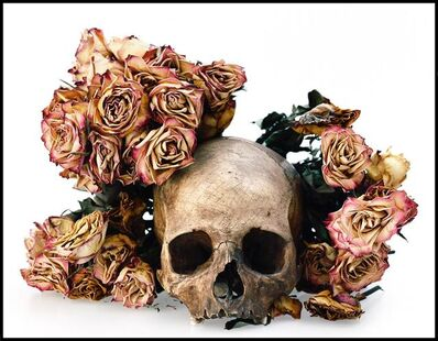 David Bailey, 'Skull with Pink Flowers', 2008