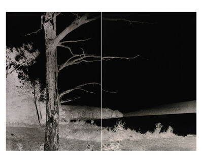 Shi Guorui 史国瑞, 'Lake with Dead Trees, Catskill Mountains, September 9 2019', 2019