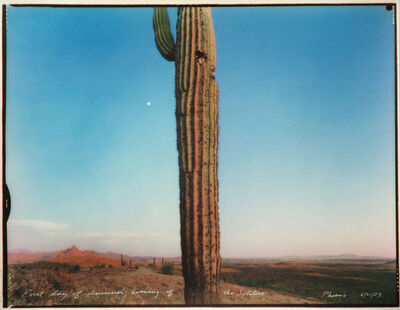 Mark Klett, 'First Day of Summer, evening of the Solstice, Phoenix 6/21/83', 1983