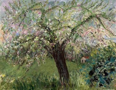 Flavia Bacarella, 'Apple Tree', 2020