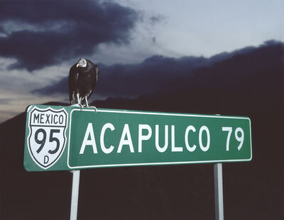 Miguel Calderón, 'Acapulco 79', 2008