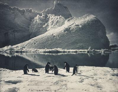Herbert George Ponting, 'Penguins and Iceberg, Antartica', 1910-1913
