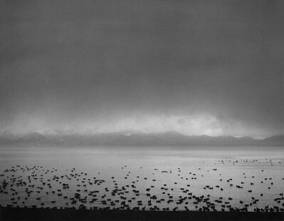 Pentti Sammallahti, 'Inawashiro Lake, Japan', 2005