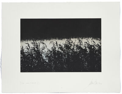 Janne Laine, 'Nocturne II', 2016