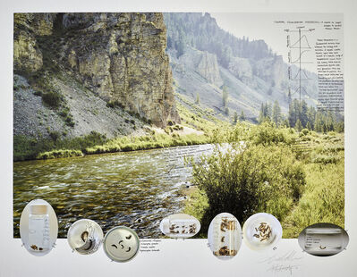Ian van Coller, 'Mayflies and Cadis Flies on the Gallatin River', 2018